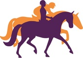 Ethical Horse And Rider Training